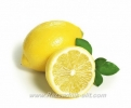 Лимони Овощен Разсадник Елит,lemon,Снимки Лимони,Лимон,Разсадник Лимони,фиданки Лимони,овошки Лимони,сортове Лимони,Разсадници Лимони,